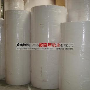 广州新塘白面牛卡纸厂家图片