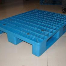 天津塑料叉车托盘价格 天津叉车塑料垫板,天津塑料托盘厂15822442519