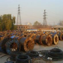 供应郑州青岛电缆