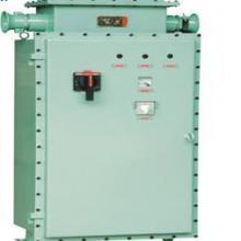 供应防爆变频器 防爆变频调速箱 BQX52防爆变频器