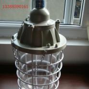 BCD防爆灯BCD250加长防爆灯图片