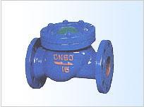 供应HQ41X-1.0/1.6球型止回阀 滑道滚球式止回阀 厂家直销  品质保证图片