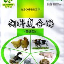 养猪用酶制剂批发