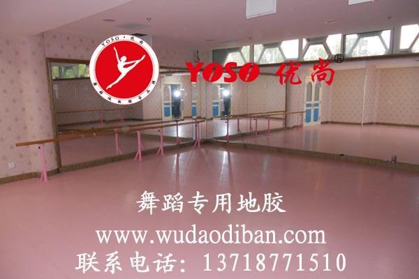 北京优尚舞蹈地胶有限责任公司