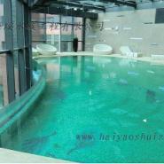 供应定做亚克力游泳池 压克力游泳池 有机玻璃游泳池