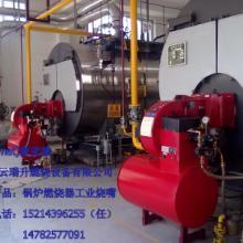 供应燃气锅炉 蒸汽锅炉 热水锅炉