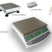 信号输出控制电秤图片