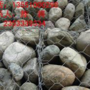 边坡防护网四川石笼网四川护栏网图片