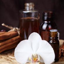 供应茶树精油原料