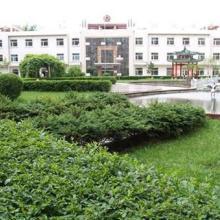 供应学校绿化养护、上海中小学校绿化养护承包公司、学校清洁绿化服务公司