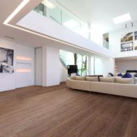 供应用于地板的龙岗菲林格尔强化板系列 龙岗菲林格尔强化板R系列 图片|效果图