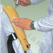 高级电子上臂肉注射训练模型图片