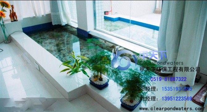 供应苏州 锦鲤鱼池生物净化过滤专利设备系统高清图片