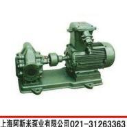 2CY型不锈钢齿轮泵图片