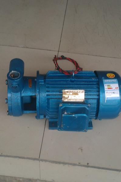 供应不1W型旋涡泵