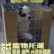 狗狗猫猫托运广州狗狗猫猫托运图片
