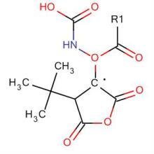 供应Boc-L-天冬氨酸酐30750-74-4图片