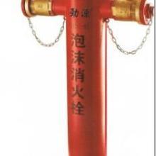 供应地上式泡沫消防栓