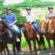 供应广州马术培训骑术班