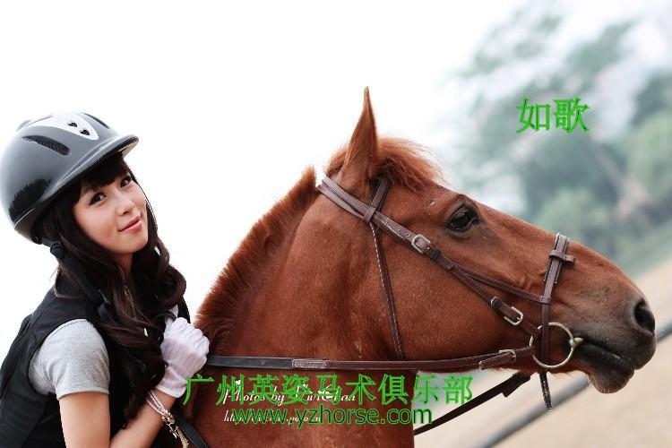 供应骑马健身图片