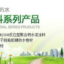 青龙建材防水代理湖南建材项目加盟代理