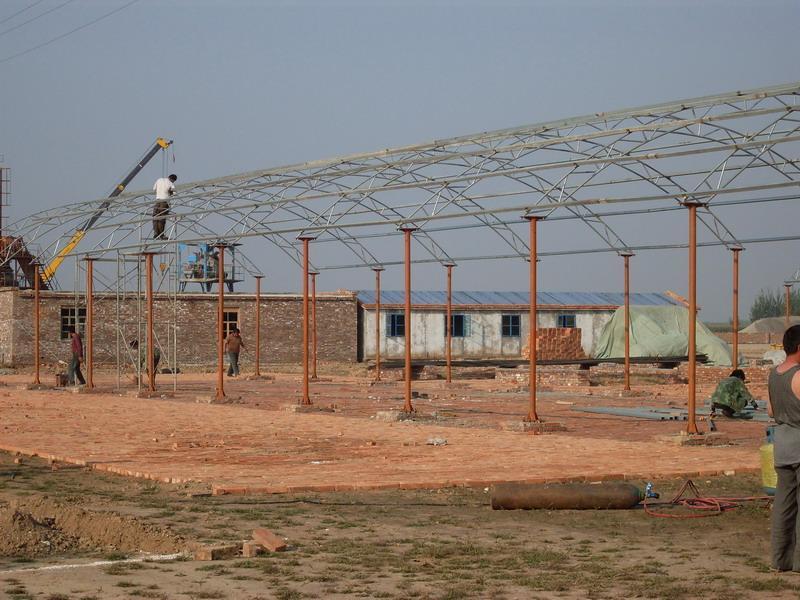 供应桂阳轻钢结构厂房、彩钢棚、钢筋棚