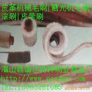 供应供皮革机械毛刷磨光机毛刷皮带刷图片