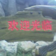 仿木小标牌图片