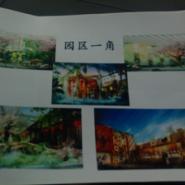 菏泽生态园的策划效果图图片