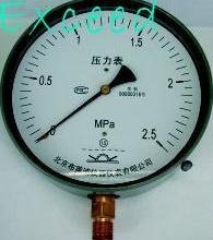 供应BLD轴向有机玻璃罩壳旋紧式压力表批发
