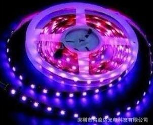 广东厂家直销5050贴片LED软灯条 30灯/米 彩色灯带 高亮度高图片