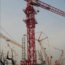 供应塔式起重机,山东塔式起重机生产厂家,聊城塔式起重机供货商