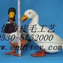 供应裘皮玩具鸭子,仿真鸭子动物