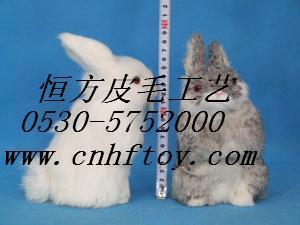 山东菏泽供应真皮动物图片
