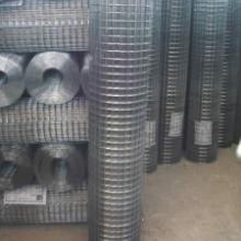 供应改拔丝电焊网批发