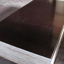供应建筑模板木模板