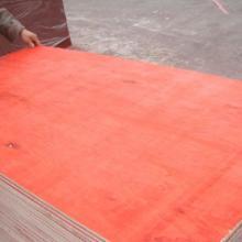 供应山东木胶板多层板包装板厂家批发