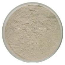 供应阿拉伯半乳聚糖价格 阿拉伯半乳聚糖用途 阿拉伯半乳聚糖生产厂家