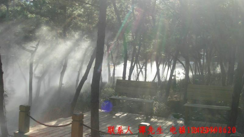 广东深圳威海市林海公园设备生