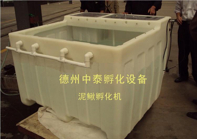 广东河源泥鳅孵化机小型孵化机图片