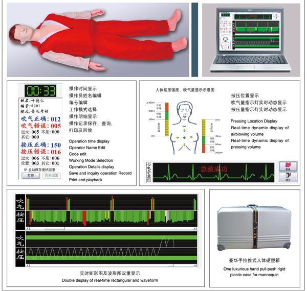 心肺复苏模型 新生儿心肺复苏模型 心肺复苏模型人