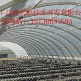 供应河北大棚钢架