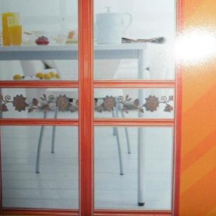 专业高档玻璃推拉门衣柜门隔断门图片