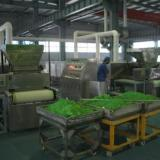 供应微波锂电池材料干燥设备