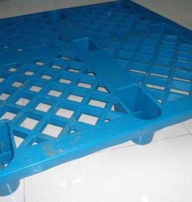 塑料托盘图片/塑料托盘样板图 (2)
