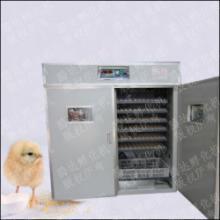 小鸡繁殖器小鸡繁殖设备小鸡养殖箱批发