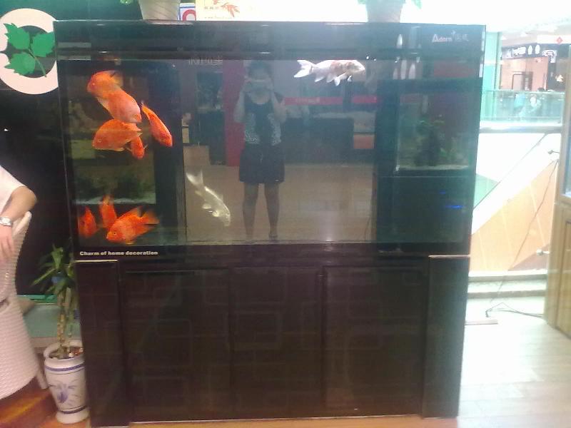 生态鱼缸图片 生态鱼缸样板图 田园风情生态鱼缸鱼缸的制高清图片