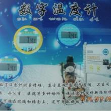 供应数字温度计卡通温度计温度计蹬被提醒器晨辉电子厂批发