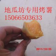 台湾缸烤碳烤地瓜专用红薯品种图片