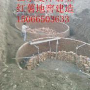 地瓜窖红薯地窖地瓜储存窖图片